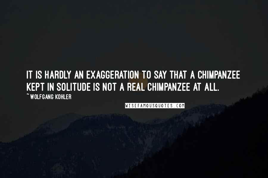 Wolfgang Kohler quotes: It is hardly an exaggeration to say that a chimpanzee kept in solitude is not a real chimpanzee at all.