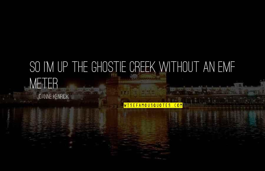 Woman And Mystery Quotes By JoAnne Kenrick: So I'm up the ghostie creek without an