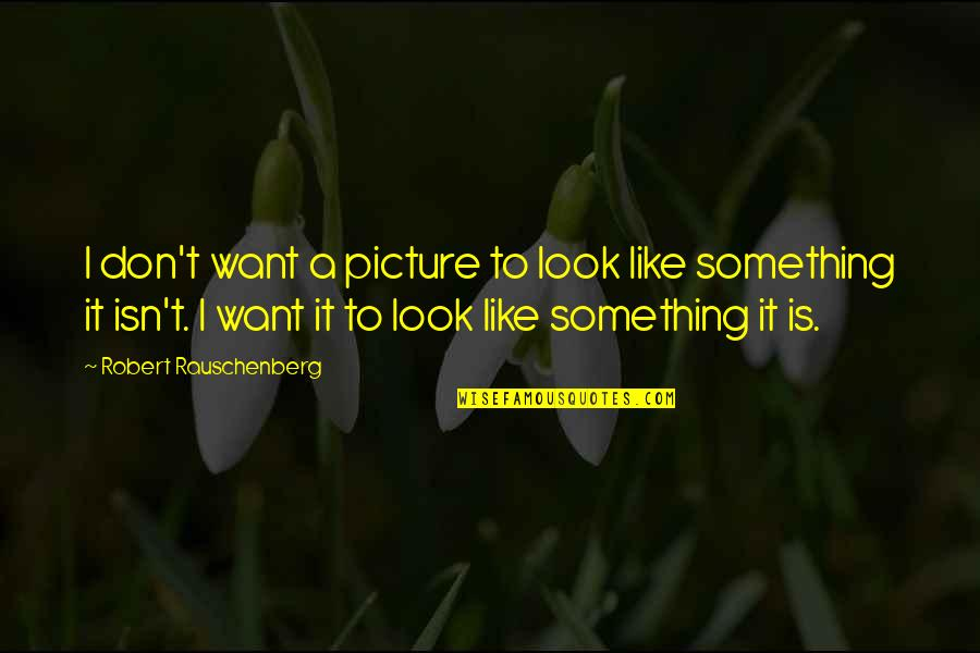 Woman Value Yourself Quotes By Robert Rauschenberg: I don't want a picture to look like