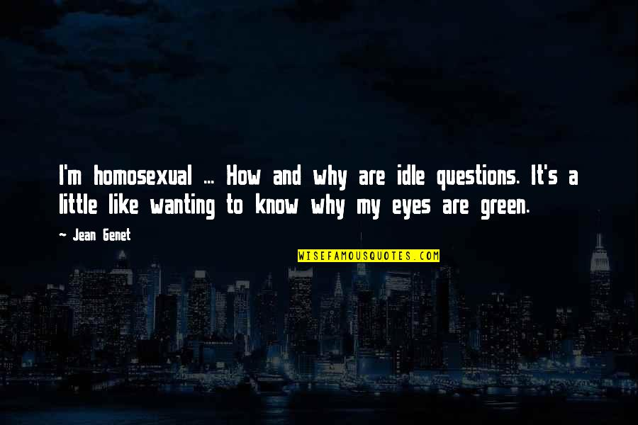 Wonder Wheel Quotes By Jean Genet: I'm homosexual ... How and why are idle