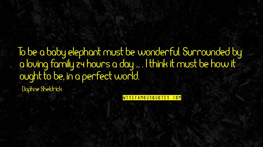 Wonderful Day Quotes By Daphne Sheldrick: To be a baby elephant must be wonderful.