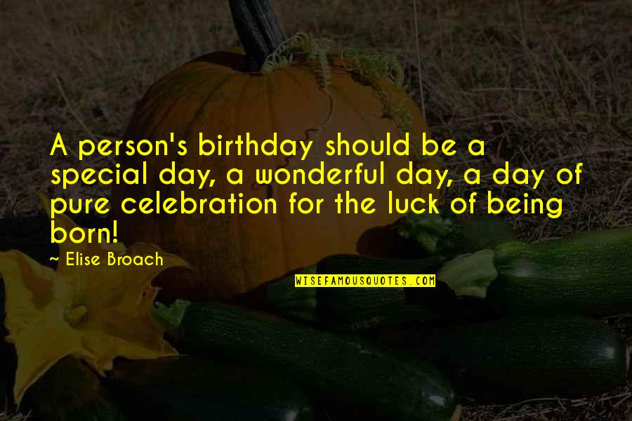 Wonderful Day Quotes By Elise Broach: A person's birthday should be a special day,