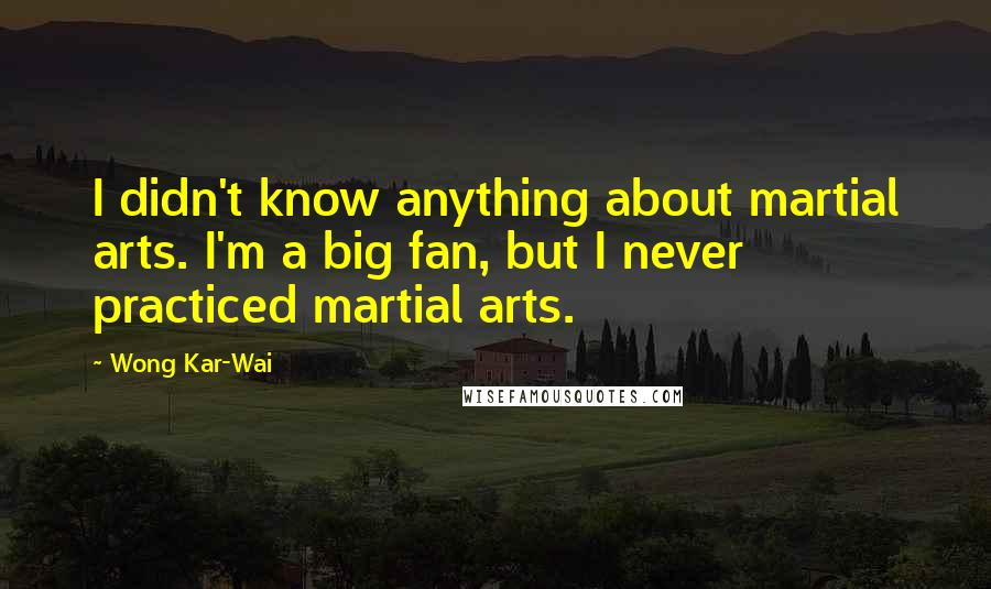 Wong Kar-Wai quotes: I didn't know anything about martial arts. I'm a big fan, but I never practiced martial arts.