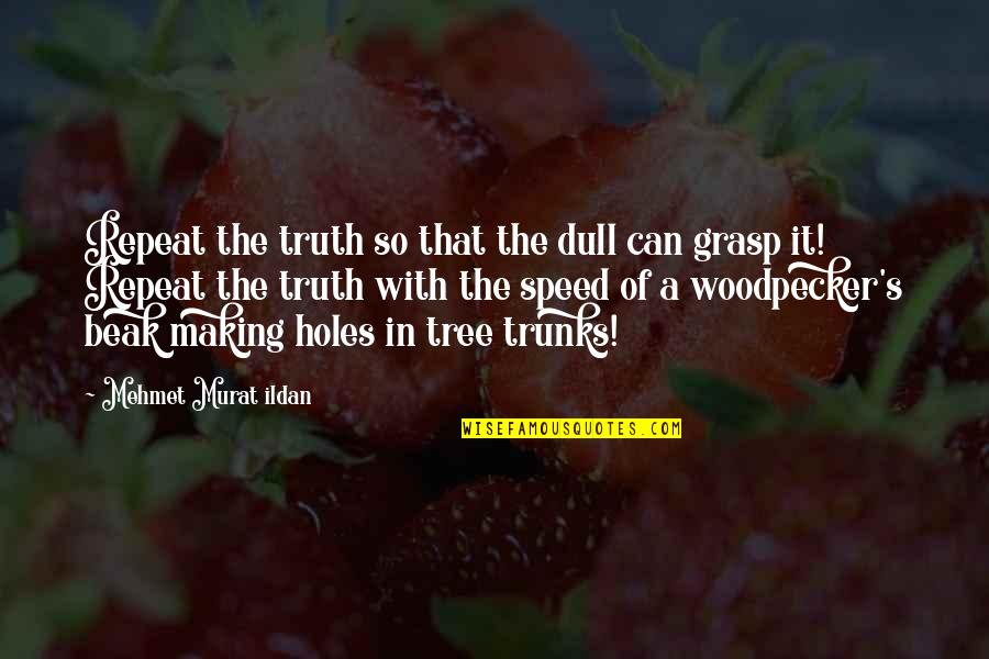 Woodpecker Quotes By Mehmet Murat Ildan: Repeat the truth so that the dull can