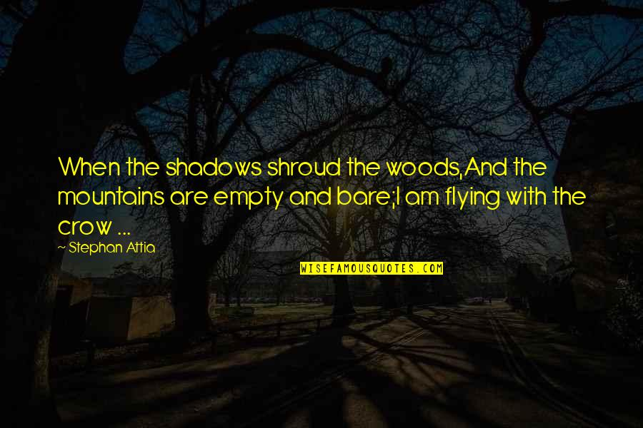 Woods Quotes Quotes By Stephan Attia: When the shadows shroud the woods,And the mountains