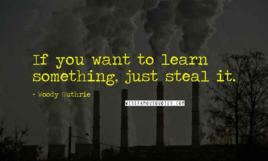 Woody Guthrie quotes: If you want to learn something, just steal it.