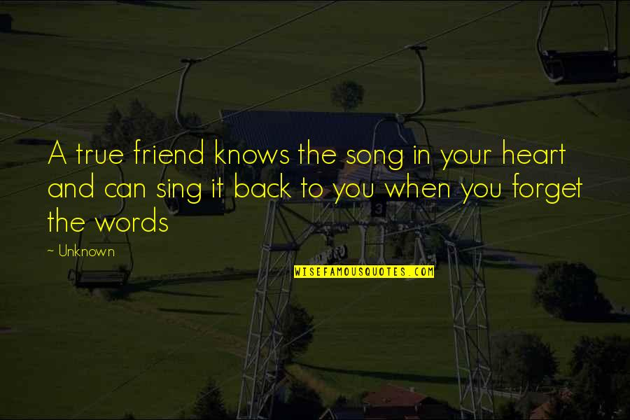 Words For Friends Quotes By Unknown: A true friend knows the song in your