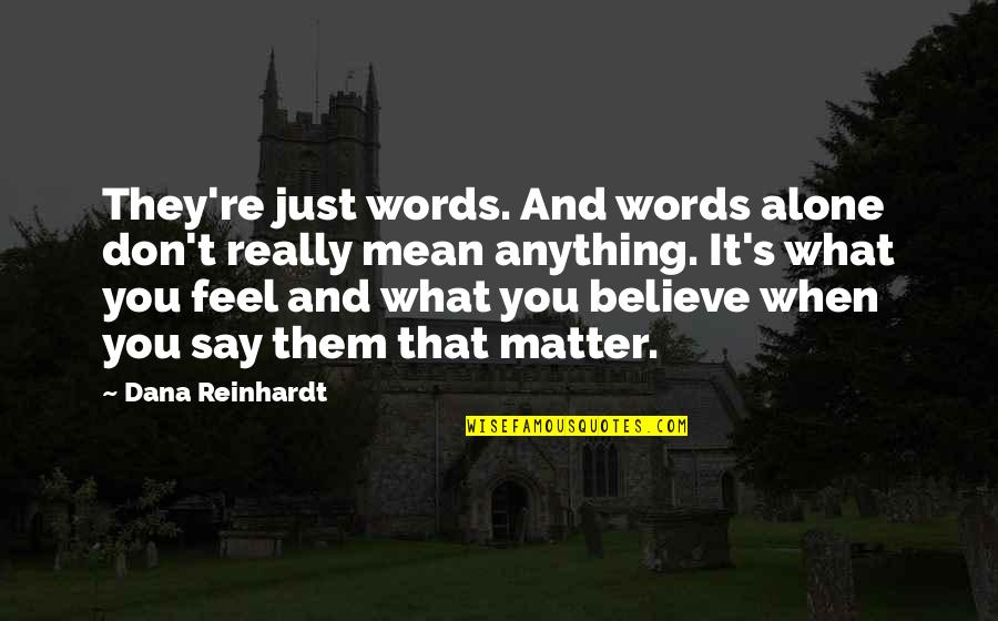 Words That Mean Quotes By Dana Reinhardt: They're just words. And words alone don't really
