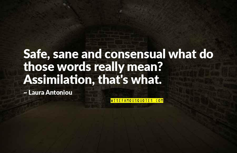 Words That Mean Quotes By Laura Antoniou: Safe, sane and consensual what do those words