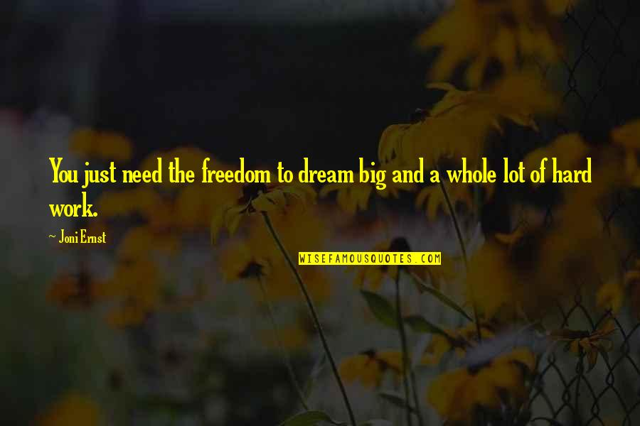 Work Hard For Your Dream Quotes By Joni Ernst: You just need the freedom to dream big