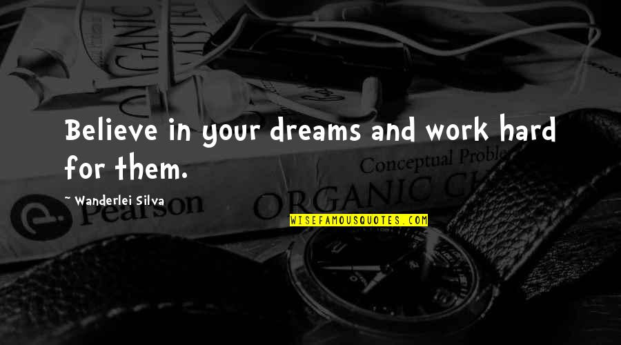 Work Hard For Your Dream Quotes By Wanderlei Silva: Believe in your dreams and work hard for