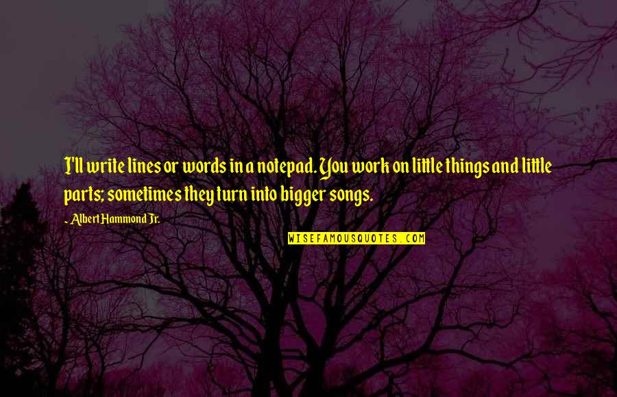 Work Quotes By Albert Hammond Jr.: I'll write lines or words in a notepad.