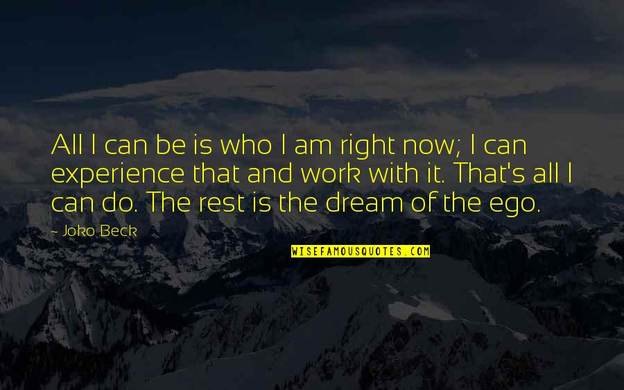 Work Quotes By Joko Beck: All I can be is who I am