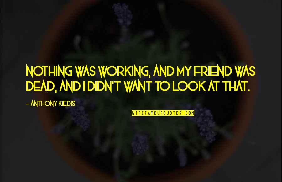 Working Out With A Friend Quotes By Anthony Kiedis: Nothing was working, and my friend was dead,