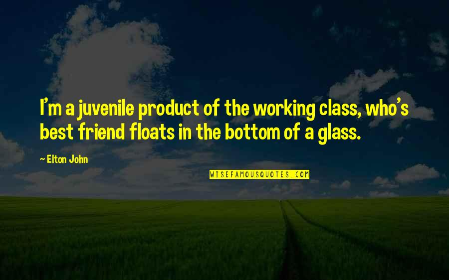 Working Out With A Friend Quotes By Elton John: I'm a juvenile product of the working class,