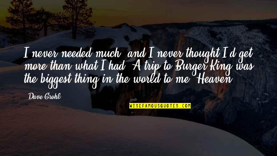 World Biggest Quotes By Dave Grohl: I never needed much, and I never thought