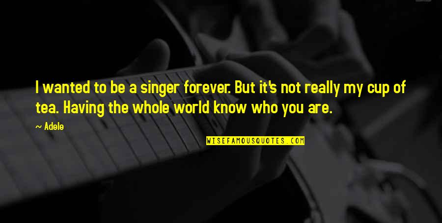 World Cup Quotes By Adele: I wanted to be a singer forever. But
