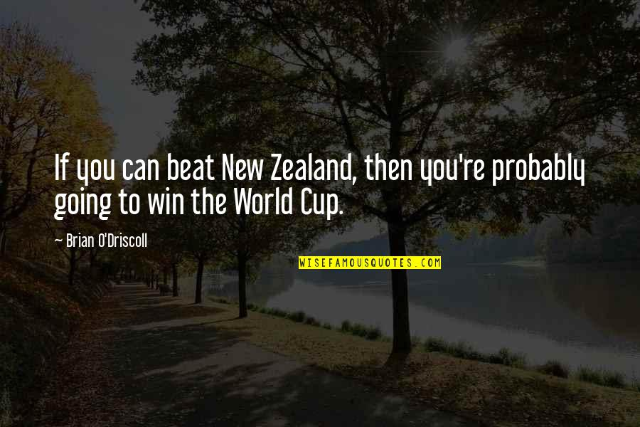 World Cup Quotes By Brian O'Driscoll: If you can beat New Zealand, then you're