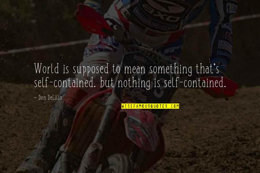 World Is Mean Quotes By Don DeLillo: World is supposed to mean something that's self-contained.