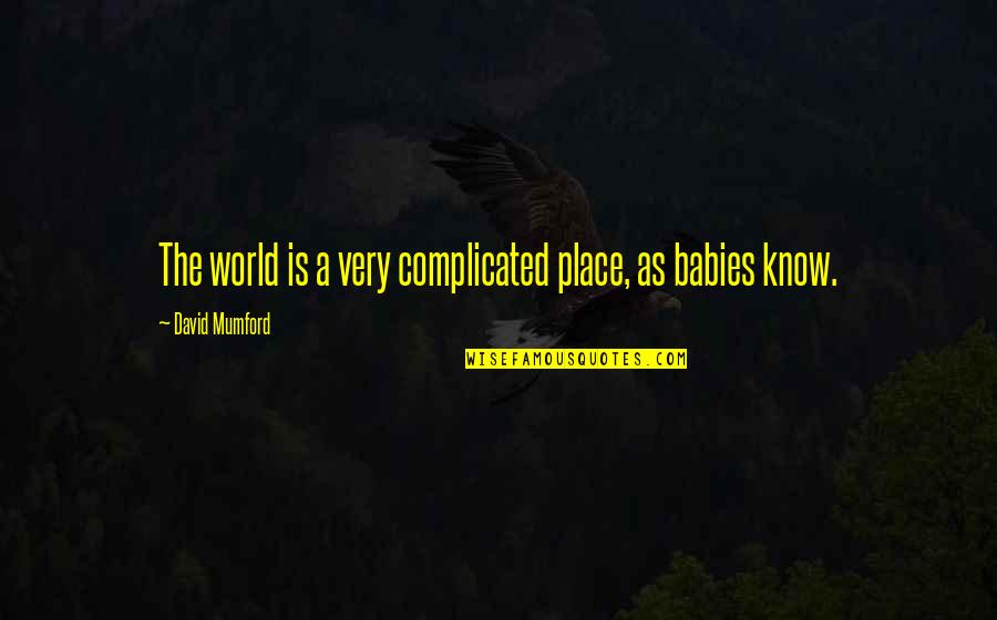 World Is Quotes By David Mumford: The world is a very complicated place, as