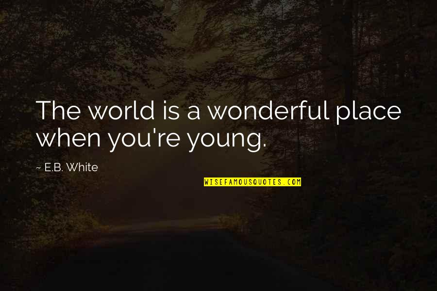 World Is Wonderful Quotes By E.B. White: The world is a wonderful place when you're