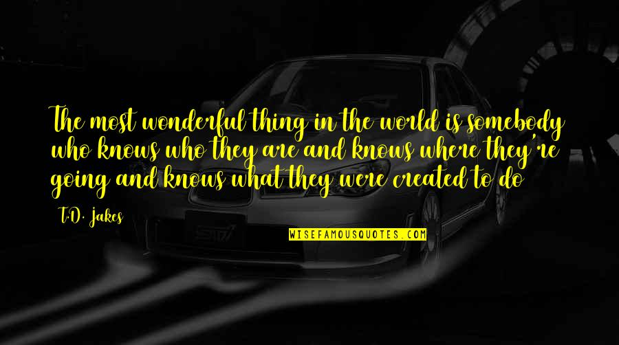 World Is Wonderful Quotes By T.D. Jakes: The most wonderful thing in the world is