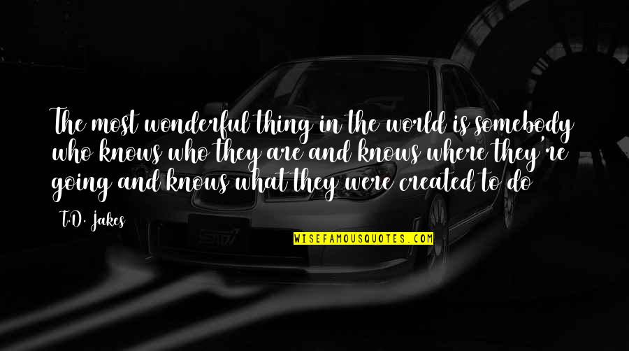 World's Most Wonderful Quotes By T.D. Jakes: The most wonderful thing in the world is