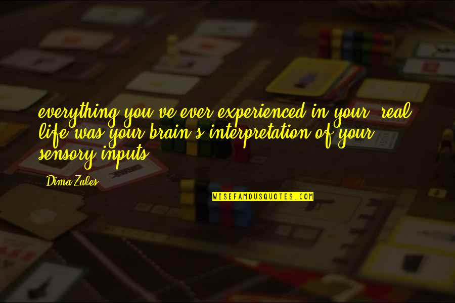 Worry When I Stop Arguing Quotes By Dima Zales: everything you've ever experienced in your 'real' life