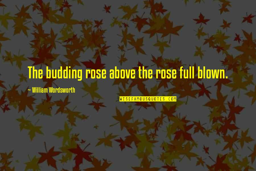 Worry When I Stop Arguing Quotes By William Wordsworth: The budding rose above the rose full blown.