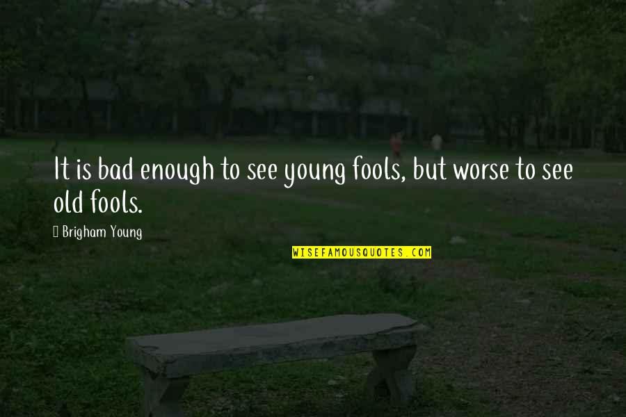 Worse Quotes By Brigham Young: It is bad enough to see young fools,