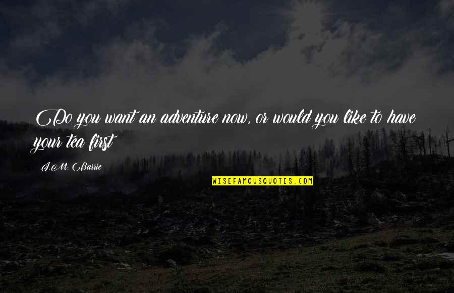 Worthless Father Quotes By J.M. Barrie: Do you want an adventure now, or would