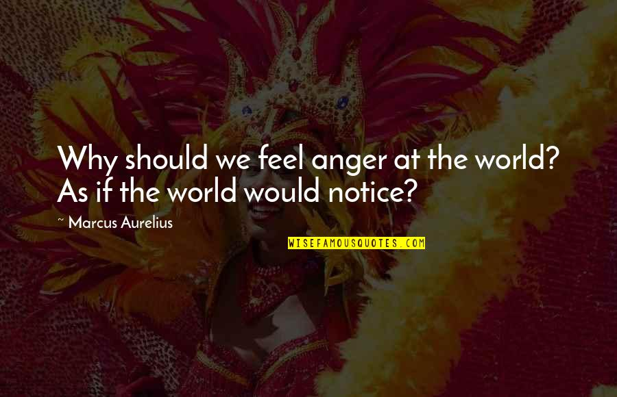 Would You Notice Quotes By Marcus Aurelius: Why should we feel anger at the world?