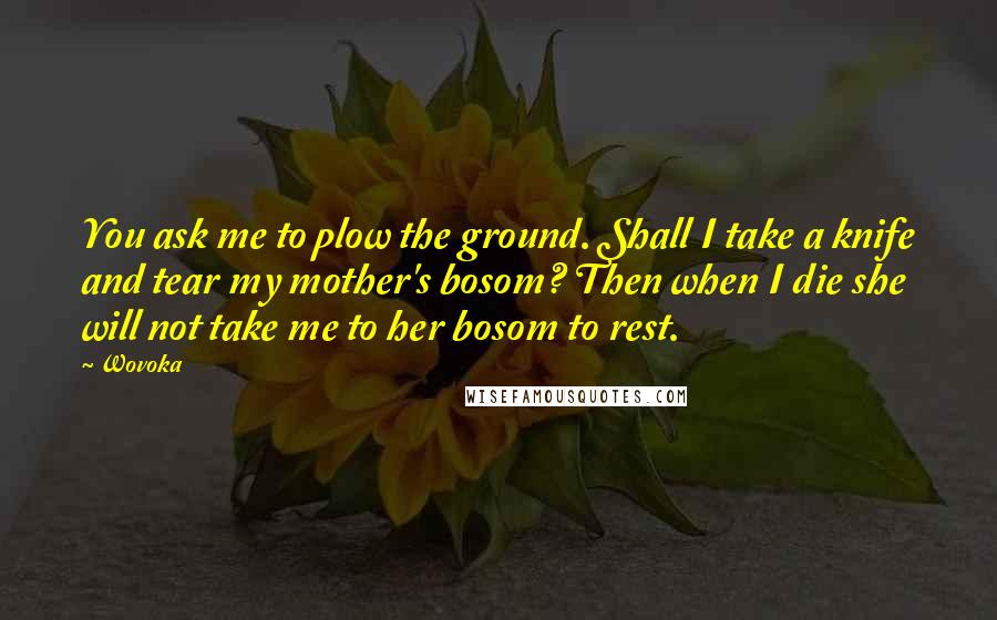 Wovoka quotes: You ask me to plow the ground. Shall I take a knife and tear my mother's bosom? Then when I die she will not take me to her bosom to