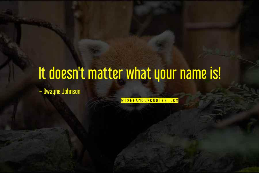 Wrestling Quotes By Dwayne Johnson: It doesn't matter what your name is!