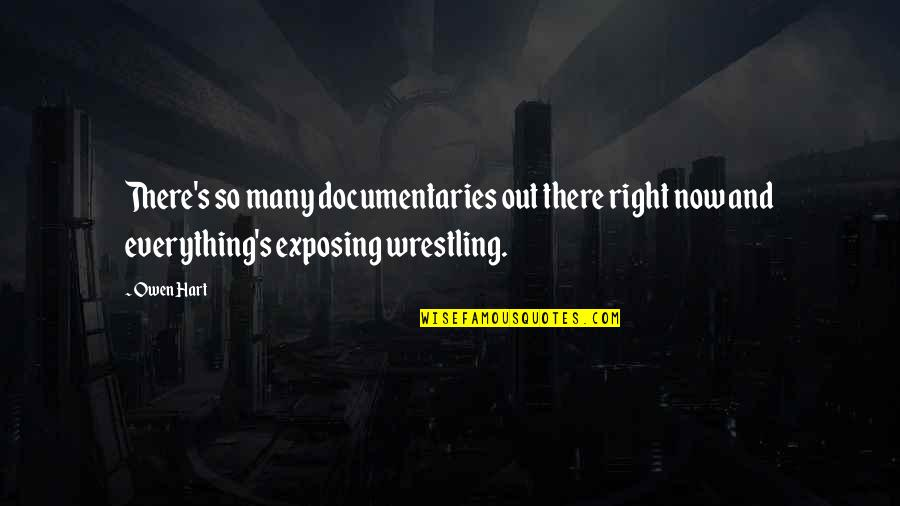 Wrestling Quotes By Owen Hart: There's so many documentaries out there right now