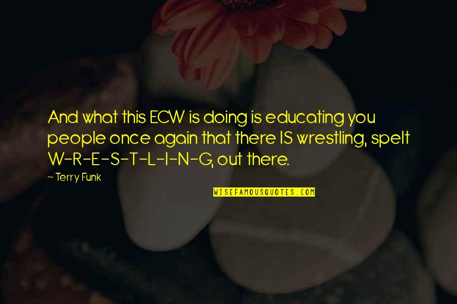 Wrestling Quotes By Terry Funk: And what this ECW is doing is educating