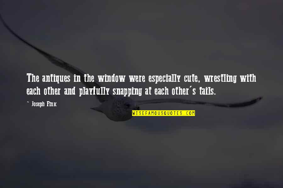Wrestling's Quotes By Joseph Fink: The antiques in the window were especially cute,