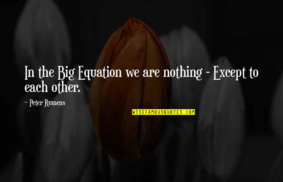 Writers Pinterest Quotes By Peter Rumens: In the Big Equation we are nothing -