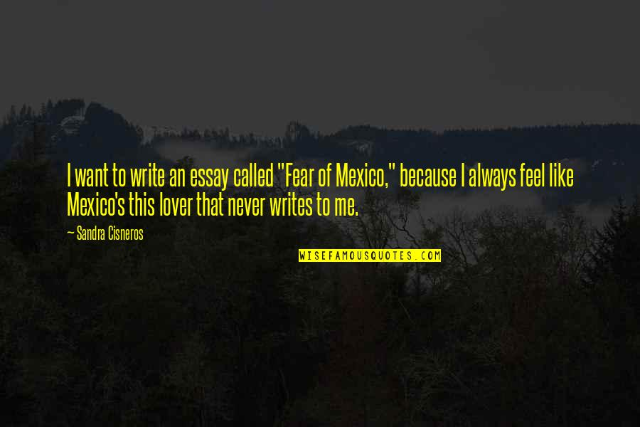 "Writing Essays On Quotes By Sandra Cisneros: I want to write an essay called ""Fear"