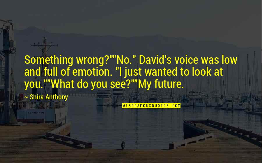 """Writing Voice Quotes By Shira Anthony: Something wrong?""""""""No."""" David's voice was low and full"""
