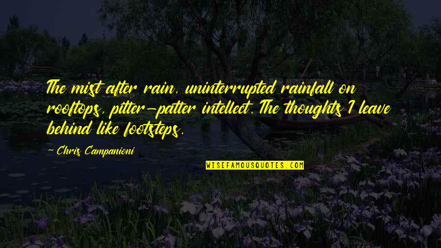 Writing Your Thoughts Quotes By Chris Campanioni: The mist after rain, uninterrupted rainfall on rooftops,