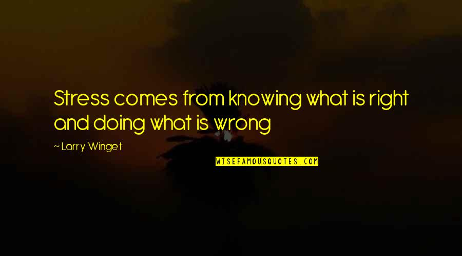 Wrong From Right Quotes By Larry Winget: Stress comes from knowing what is right and