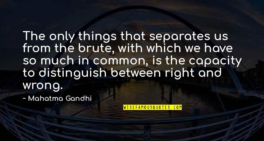 Wrong From Right Quotes By Mahatma Gandhi: The only things that separates us from the