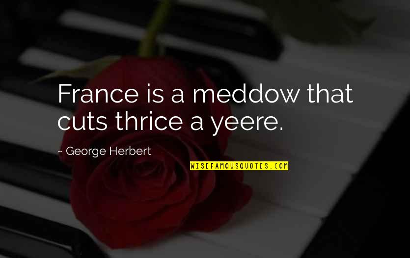 Wudi Quotes By George Herbert: France is a meddow that cuts thrice a