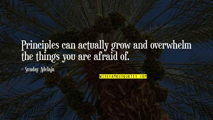 Wuthering Heights Chapter 13 Key Quotes By Sunday Adelaja: Principles can actually grow and overwhelm the things