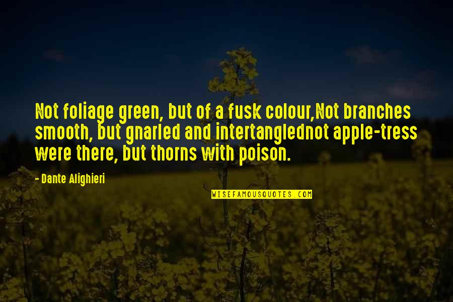 Xiii-2 Quotes By Dante Alighieri: Not foliage green, but of a fusk colour,Not