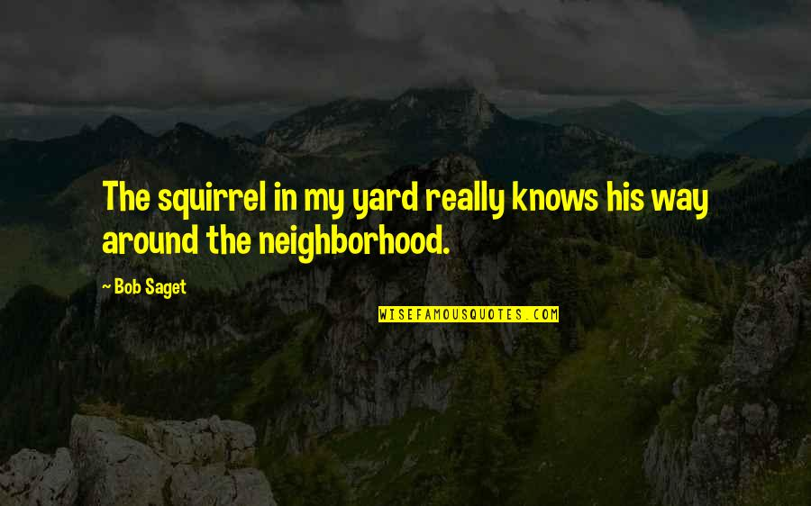 Yards Quotes By Bob Saget: The squirrel in my yard really knows his