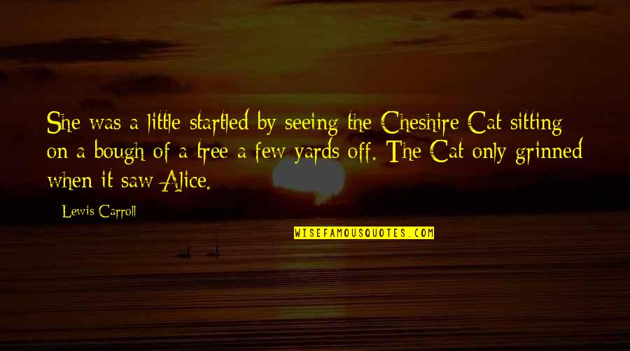Yards Quotes By Lewis Carroll: She was a little startled by seeing the