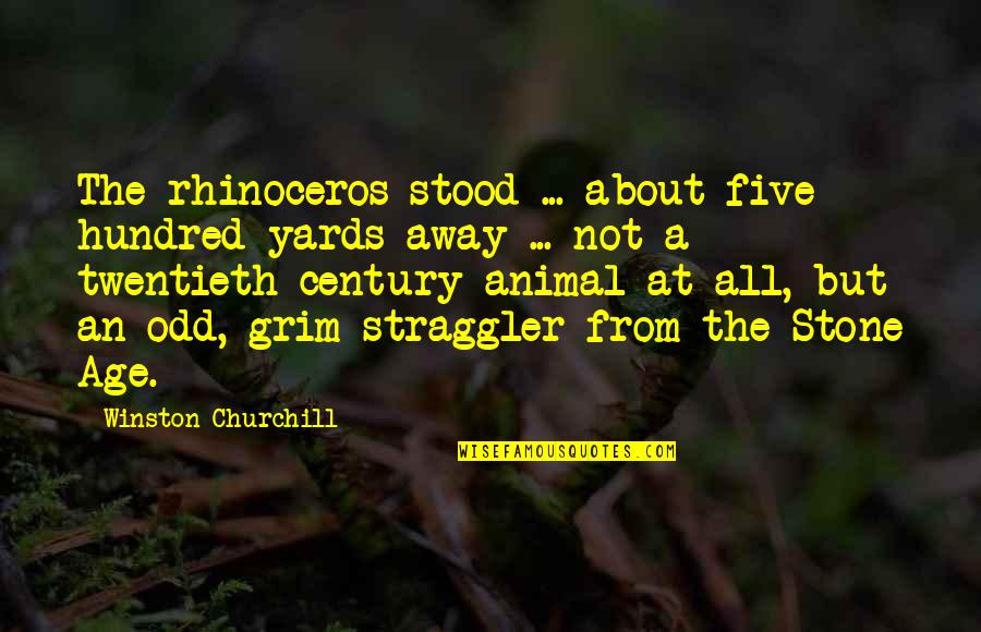 Yards Quotes By Winston Churchill: The rhinoceros stood ... about five hundred yards