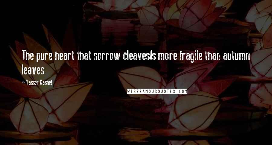 Yasser Kashef quotes: The pure heart that sorrow cleavesIs more fragile than autumn leaves